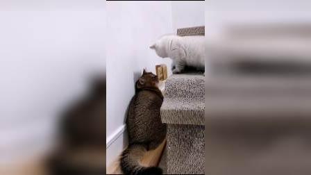 """""""嗯""""也要打一下,太过分了!"""