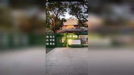 杭州薛大胖讲解岳王庙