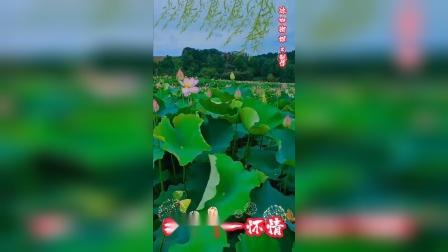 豫剧陈派伴奏新白蛇传【随君愿饮雄黄勉强站定】