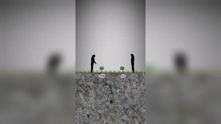 情感动画:勤能补拙,笨鸟先飞