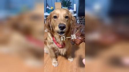 突如其来的幸福,让狗子不知所措。