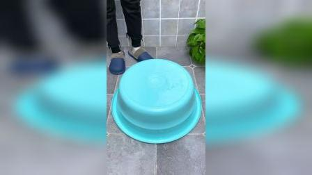 折叠水盆大家都有嘛,方便携带超实用