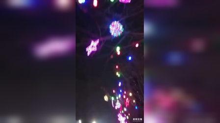 欢乐歌——元宵节日好,各色灯齐亮。同奔小康路,人民共欢笑!