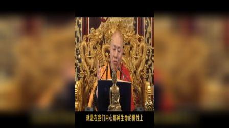 龙舒净土文    09讲(下)(共12讲)   大安法师2010年9月主讲于吉林省吉林市.VOB