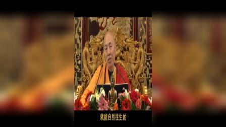 龙舒净土文    11讲(下)(共12讲)   大安法师2010年9月主讲于吉林省吉林市.VOB