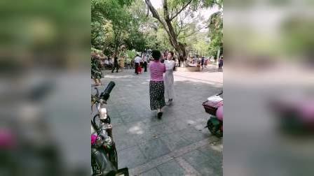妙手杏林上传:精选交谊舞(吉特巴)