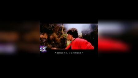沙鲁克汗(发自内心)歌舞,印度电影