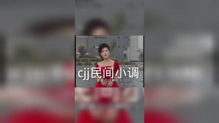 cjj民间小调-徐善云《二月里来》
