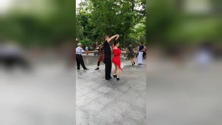 美人吟交谊舞(精彩伦巴男步,梧桐枝。女媛媛美女。)zhanghongaaa摄制