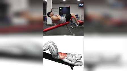 目标肌肉:腹肌/肚子/啤酒肚#仰卧起坐