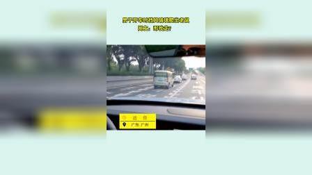 男子开车时 挡风玻璃突然爬出老鼠 副驾驶吓到尖叫