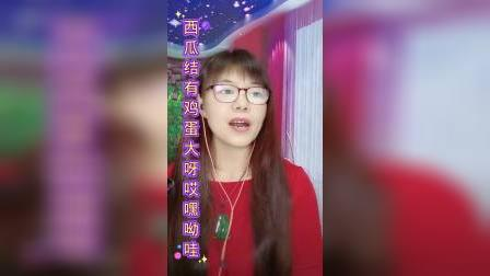 cjj民间小调-徐善云《懒大嫂》3