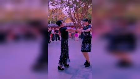 男步zhanghongaaa交谊舞(规范动作,教学版),短视频