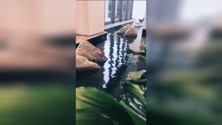 雪浪石组合,美丽的室内庭院有山有水的地方!