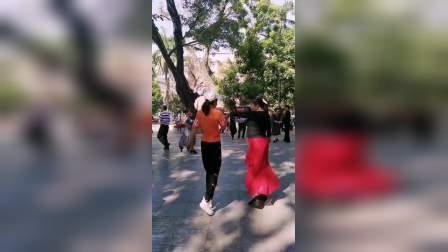 男步zhanghongaaa交谊舞:女步,阿娟靓女