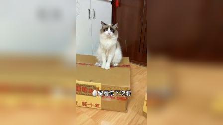 这么小个箱子居然这么能装