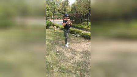 萨克斯春风(公园里手机录的质量差点)