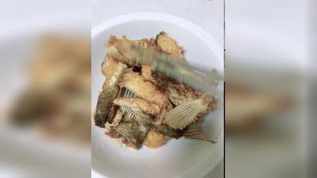 肉肉 超级黄金爆鱼研制成功