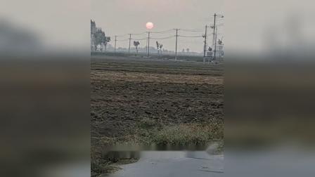 家乡随拍:浓雾绕绕,日出也妖娆!