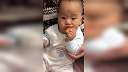 宝贝儿子第一次吃草莓