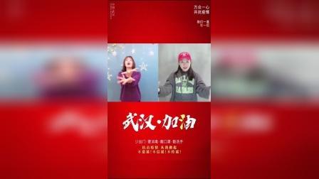 荆州市舞蹈家协会为中国加油为湖北加油!—— 秦园舞蹈全体教师