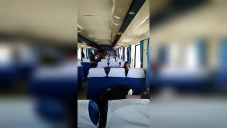 青藏铁路可可西里视频