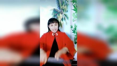 河南坠子 大宋侠义传[老包下山东]直播版片段(胡银花老师演唱)