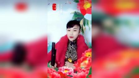 河南坠子 猛虎学艺(胡银花老师演唱)