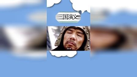 用《改革春风吹满地》打开三国演义,太鬼畜了.mp4