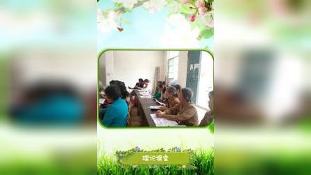 2018年天等县新型职业农民培训——进结镇蚕桑生产班集锦