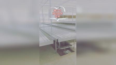 潮汐式灌溉苗床在设施农业中的新应用,你了解多少?