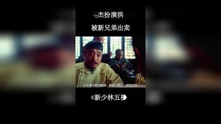 《新少林五祖》李连杰经典武打电影,看十遍都不腻,太帅了!
