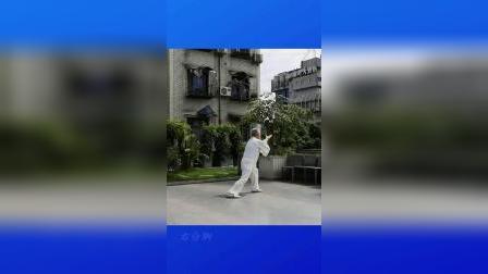 HXY演练(背向)精编杨氏禇架太极拳36式—竖屏(2020)
