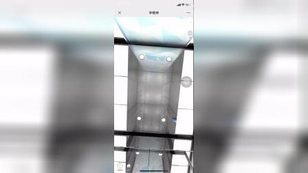 辛格林电梯乘客电梯S系列之SGL-18-06