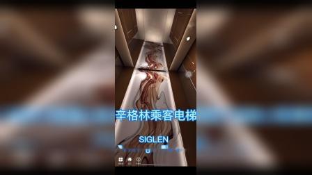 辛格林乘客电梯,你想要的各种风格的乘客电梯这里都有!