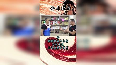 今天给大家聊聊李小龙的上击拳,浅谈咏春的标指