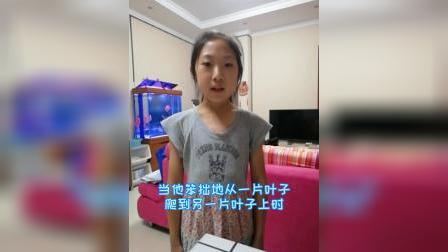 《小毛虫》二年级语文下册-刘宥鑫背诵