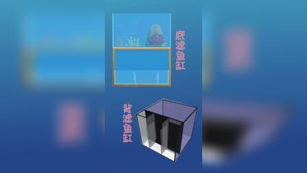 饲养海缸需要哪些设备-小莫教你养海水