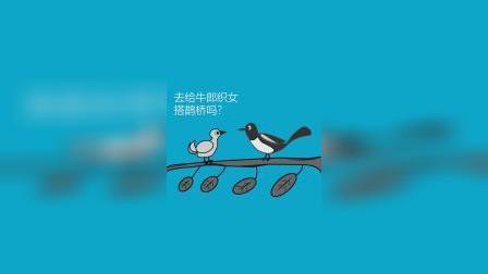 你知道喜鹊是怎么过七夕节的吗?