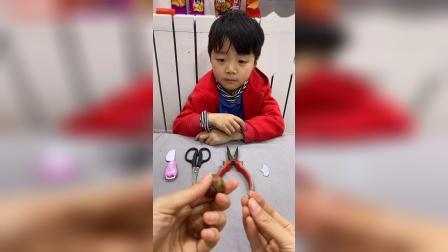 童年趣事:如何正确的打开坚果