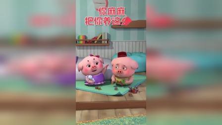 可爱猪:豆豆猪便宜卖了,有想买走吗!