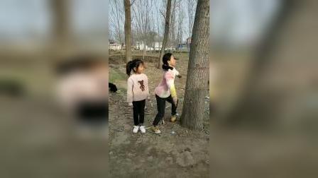 童年趣事:不是你让我抱树的吗