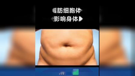 脂肪就是油,会呼吸的痛。来看看脂肪如何占据你的小蛮腰咯!