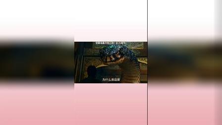 沙海烛龙:双头蛇有点狠,直接吃人