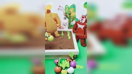熊大发现了这么胡萝卜!快把萝卜放进坑里吧!