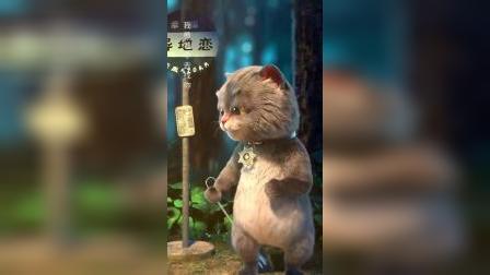 斑布猫:真正爱一个人
