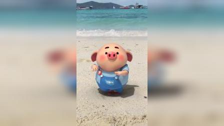 猪小屁:猪小屁在海边跳海藻舞,真是可可爱爱