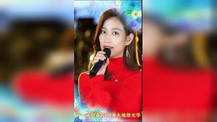 粤语新年歌《迎春花》演唱:亮声王晴 祝大家春节快乐!(竖版)