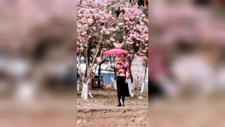 湘女王早春赏花02版      制作:湘女王