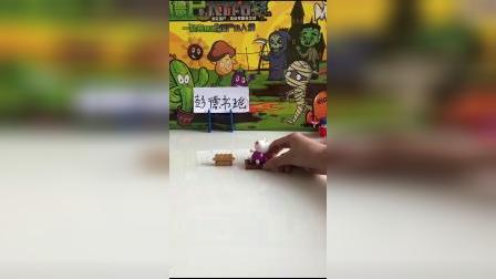 儿童玩具:乌龟真好心
